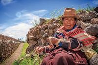 Bekijk details van Inca's