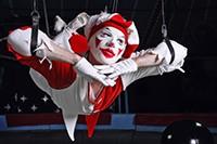 Bekijk details van Circus